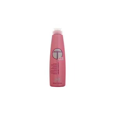 Vitality's Shampoing Technica Color 250ml