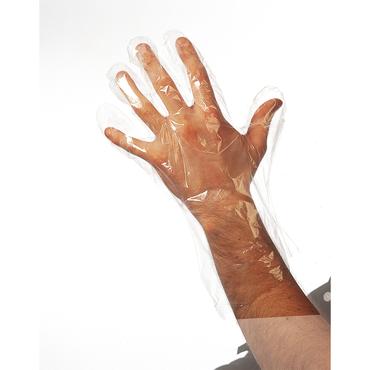 Sibel Wegwerp Handschoenen L 50st/0931002