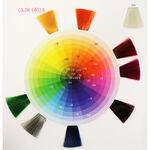 Wunderbar Color Chart Jan 2020